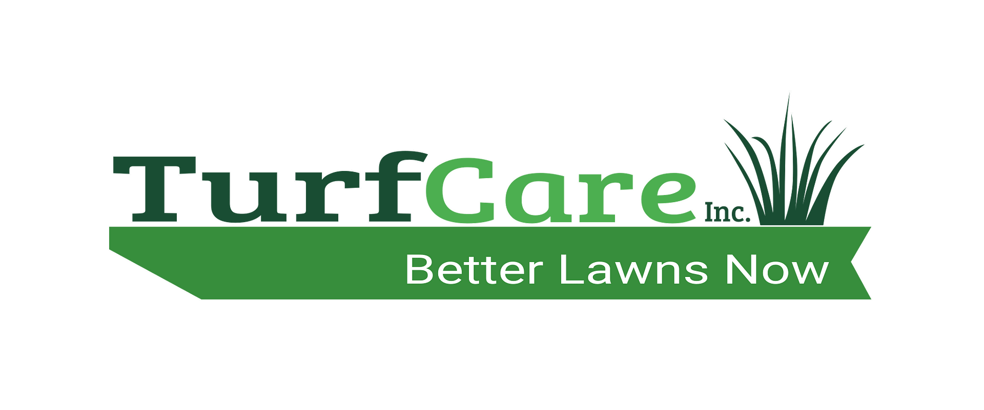 Christmas Lighting Lawn Mower Repair and Service and sales